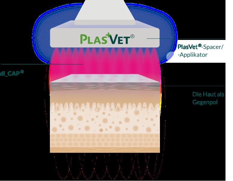 plasvet-wirkung-3